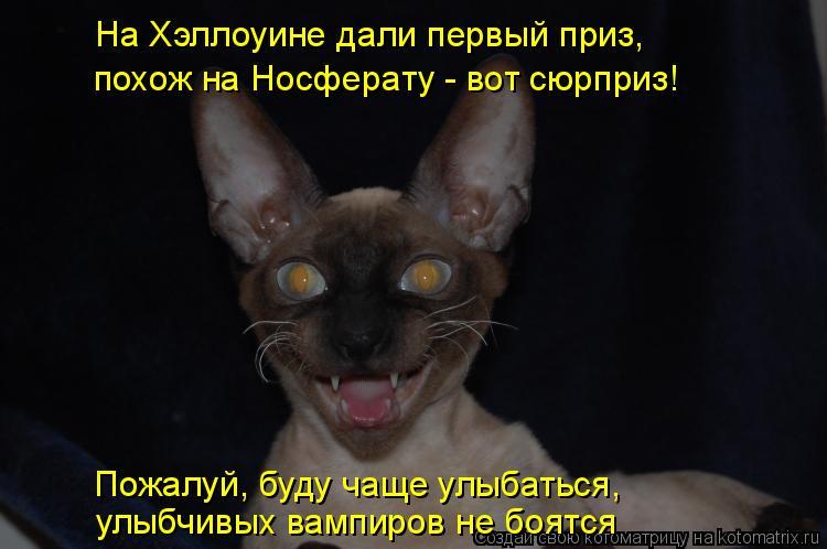 Котоматрица: На Хэллоуине дали первый приз, похож на Носферату - вот сюрприз! Пожалуй, буду чаще улыбаться, улыбчивых вампиров не боятся