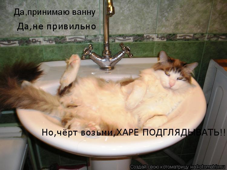 Котоматрица: Да,принимаю ванну Да,не привильно Но,чёрт возьми,ХАРЕ ПОДГЛЯДЫВАТЬ!!!