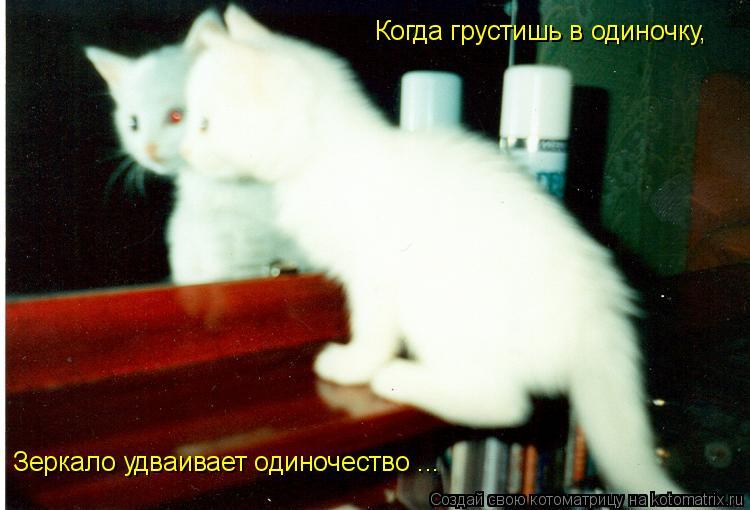 Котоматрица: Когда грустишь в одиночку, Зеркало удваивает одиночество ...