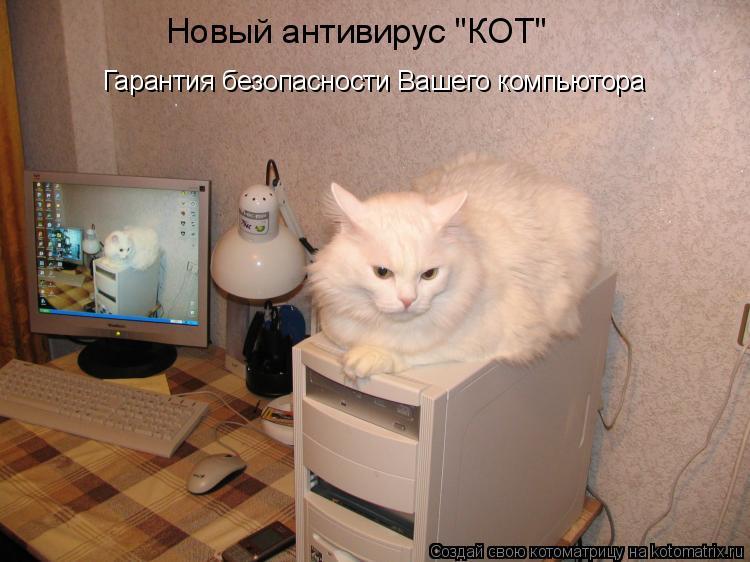 """Котоматрица: Новый антивирус """"КОТ"""" Гарантия безопасности Вашего компьютора"""