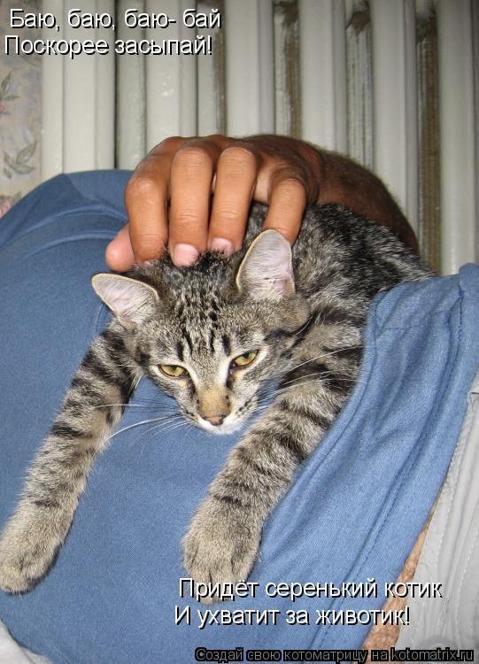 Котоматрица: Баю, баю, баю- бай Поскорее засыпай! Придёт серенький котик И ухватит за животик!