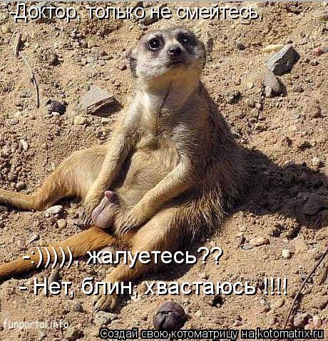 Котоматрица: -Доктор, только не смейтесь,  -:))))), жалуетесь?? - Нет, блин, хвастаюсь !!!!