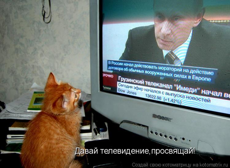 Котоматрица: Давай телевидение,просвящай!