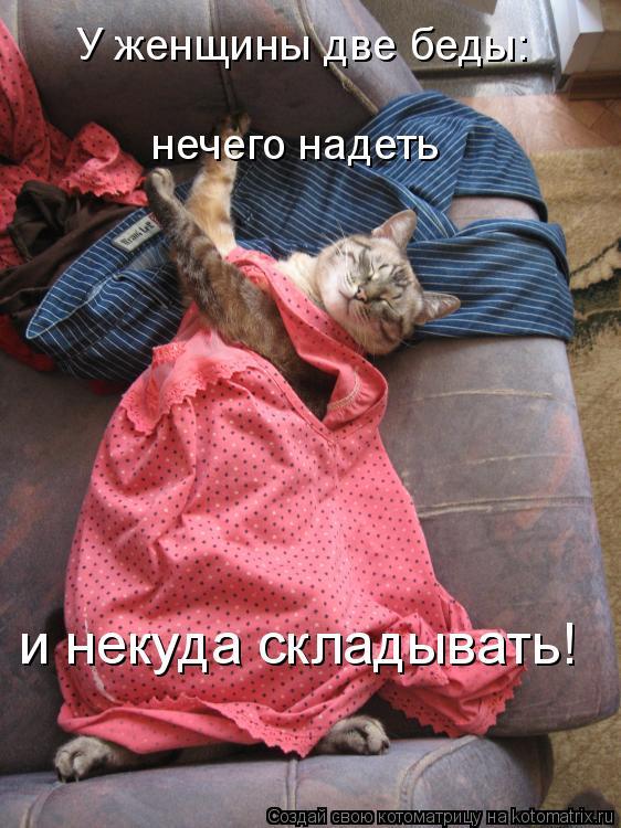 Котоматрица: У женщины две беды: нечего надеть  и некуда складывать!