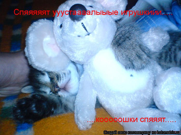 Котоматрица: Спяяяяят ууустаааалыыые игрушкиии..... ....кооооошки спяяят.....