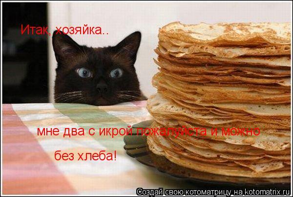 Котоматрица: Итак, хозяйка.. мне два с икрой пожалуйста и можно  без хлеба!