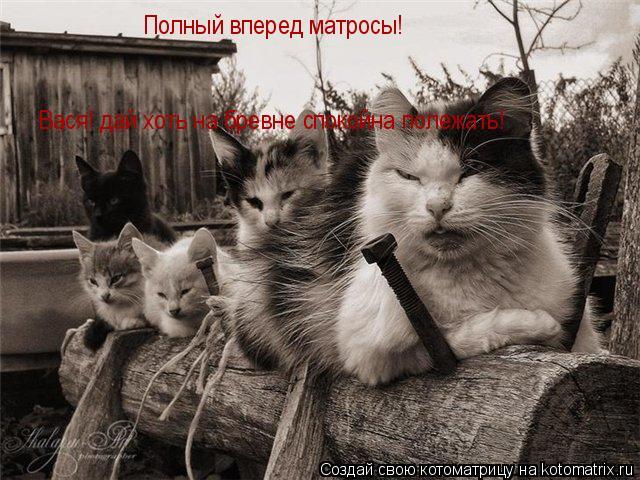 Котоматрица: Полный вперед матросы! Вася! дай хоть на бревне спокойна полежать!