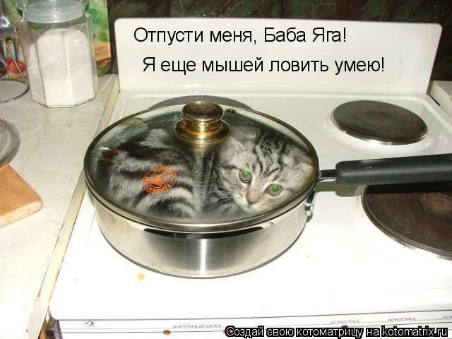 Котоматрица: Отпусти меня, Баба Яга! Я еще мышей ловить умею!