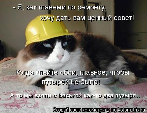 Котоматрица: - Я, как главный по ремонту, хочу дать вам ценный совет! Когда клеите обои, главное, чтобы  пузырей не было! А то мы взяли с Васькой как-то два п