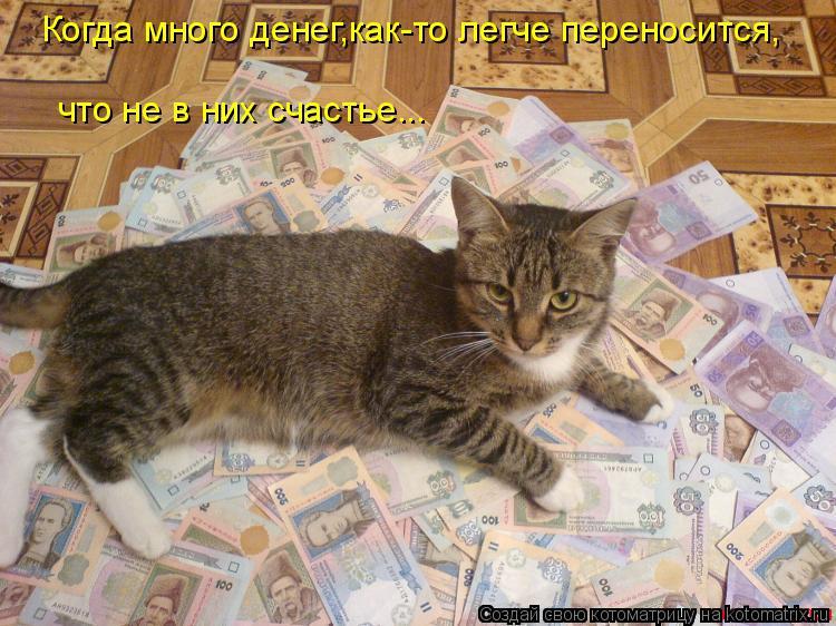 Котоматрица: Когда много денег,как-то легче переносится, что не в них счастье...
