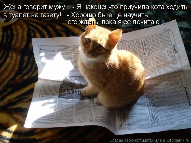 Котоматрица: Жена говорит мужу:   - Я наконец-то приучила кота ходить  в туалет на газету!   - Хорошо бы ещё научить  его ждать, пока я её дочитаю. .
