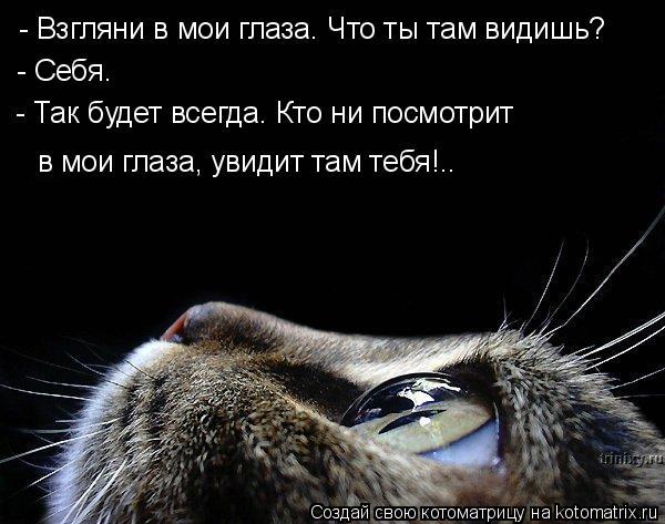 Котоматрица: - Взгляни в мои глаза. Что ты там видишь? - Себя. - Так будет всегда. Кто ни посмотрит  в мои глаза, увидит там тебя!..