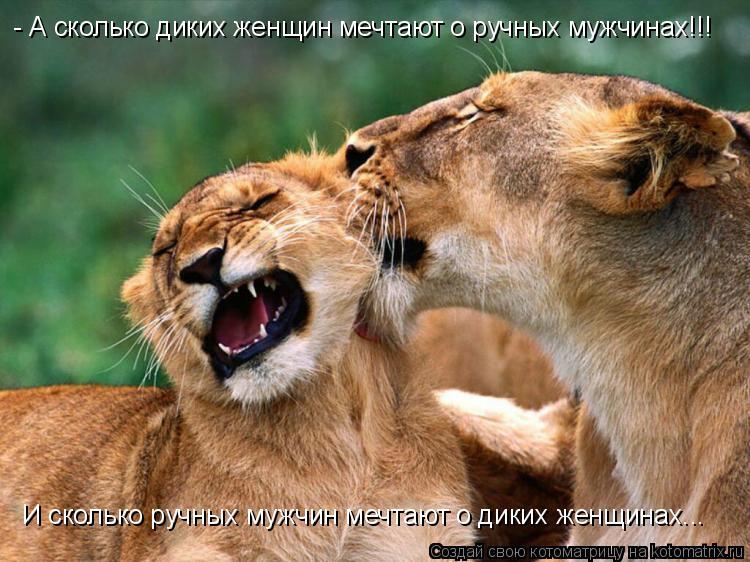 Котоматрица: - А сколько диких женщин мечтают о ручных мужчинах!!! И сколько ручных мужчин мечтают о диких женщинах...