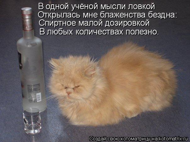 Котоматрица: В одной учёной мысли ловкой Открылась мне блаженства бездна: Спиртное малой дозировкой В любых количествах полезно.