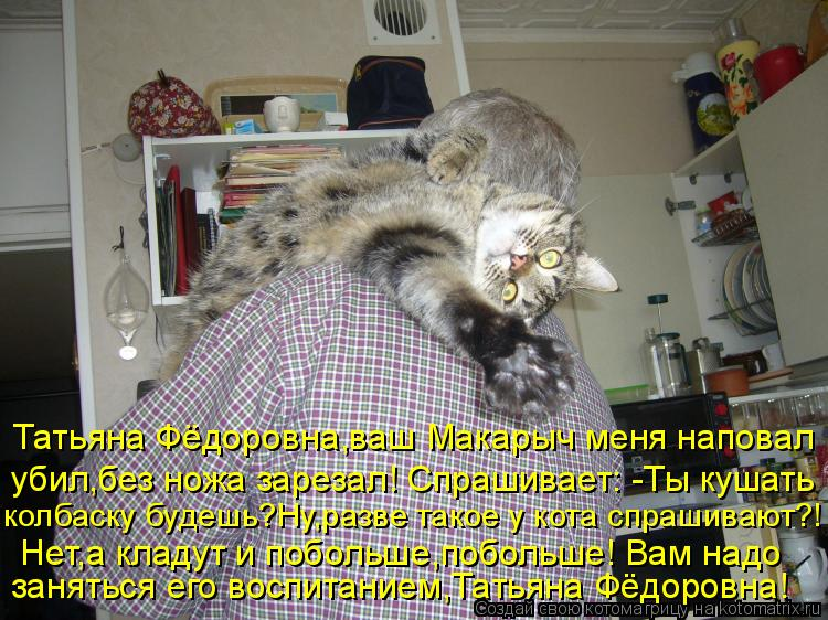 Котоматрица: Татьяна Фёдоровна,ваш Макарыч меня наповал убил,без ножа зарезал! Спрашивает: -Ты кушать колбаску будешь?Ну,разве такое у кота спрашивают?!