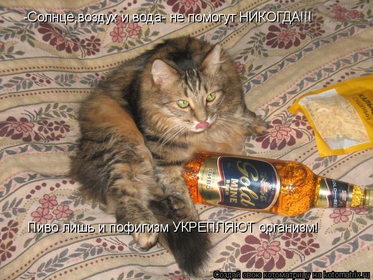 Котоматрица: -Солнце,воздух и вода- не помогут НИКОГДА!!!  Пиво лишь и пофигизм УКРЕПЛЯЮТ организм!