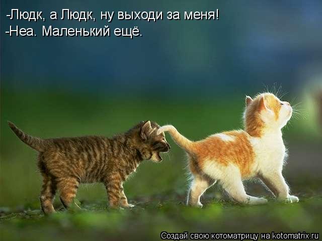 Котоматрица: -Людк, а Людк, ну выходи за меня! -Неа. Маленький ещё.