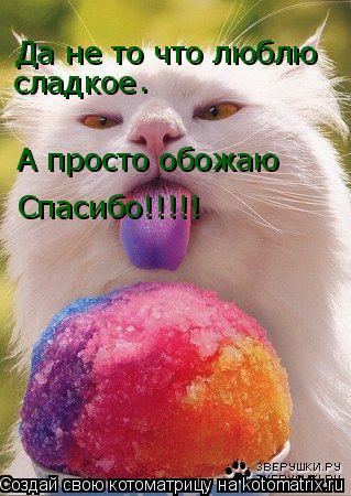 Котоматрица: Да не то что люблю  сладкое . А просто обожаю Спасибо!!!!!