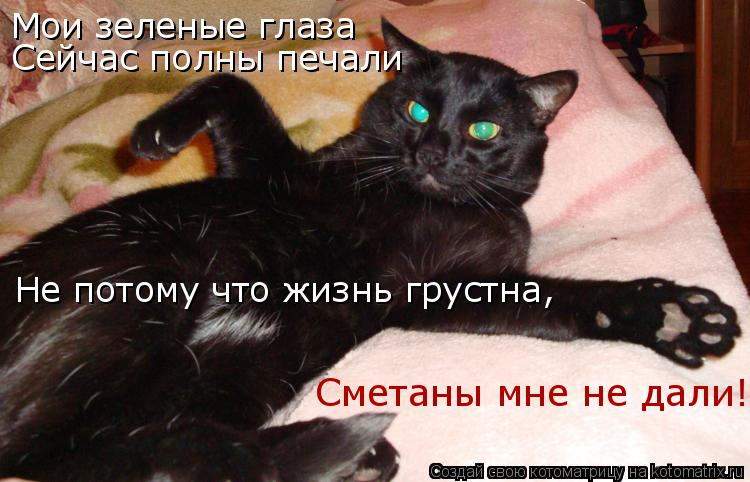 Котоматрица: Мои зеленые глаза Сейчас полны печали Не потому что жизнь грустна, Сметаны мне не дали!