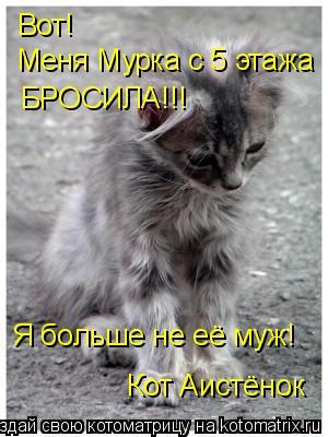 Котоматрица: Вот! Меня Мурка с 5 этажа БРОСИЛА!!! Я больше не её муж! Кот Аистёнок