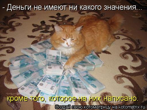 Котоматрица: - Деньги не имеют ни какого значения... кроме того, которое на них написано.
