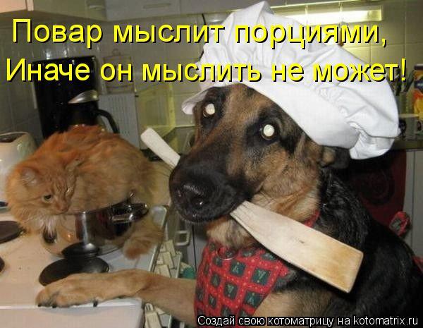 Котоматрица: Повар мыслит порциями, Иначе он мыслить не может!