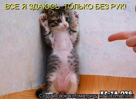 Котоматрица: ВСЕ Я ЗДАЮСЬ  ТОЛЬКО БЕЗ РУК!