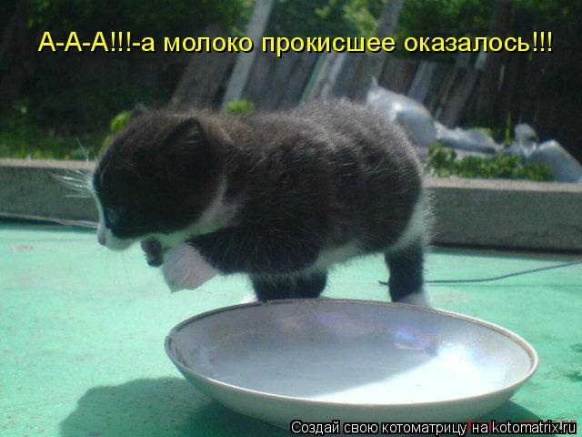 Котоматрица: А-А-А!!!-а молоко прокисшее оказалось!!!