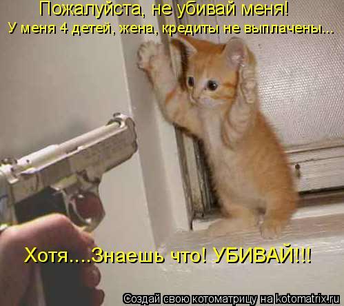 Котоматрица: Пожалуйста, не убивай меня! У меня 4 детей, жена, кредиты не выплачены... Хотя....Знаешь что! УБИВАЙ!!!