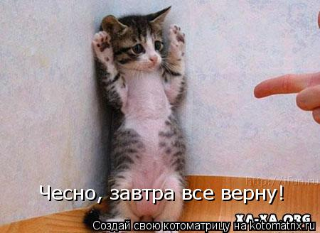 Котоматрица: Чесно, завтра все верну!