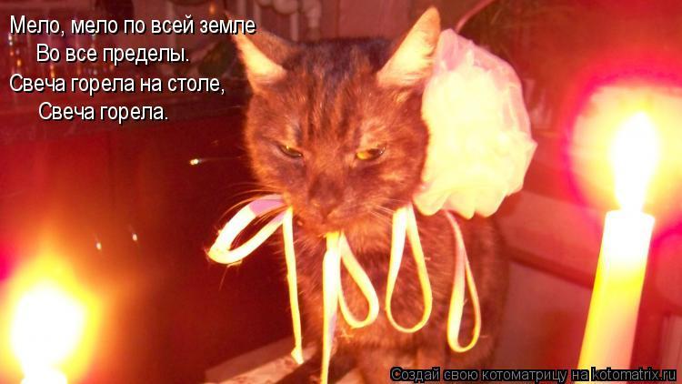 Котоматрица: Мело, мело по всей земле Во все пределы. Свеча горела на столе, Свеча горела.