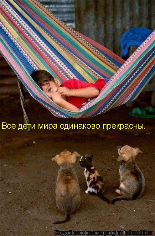 Котоматрица: Все дети мира одинаково прекрасны.