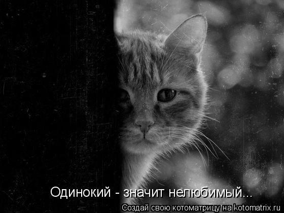 Котоматрица: Одинокий - значит нелюбимый...