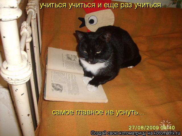 Котоматрица: учиться учиться и еще раз учиться  самое главное не уснуть...