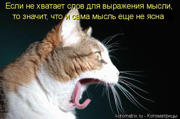 Котоматрица: Если не хватает слов для выражения мысли,  то значит, что и сама мысль еще не ясна