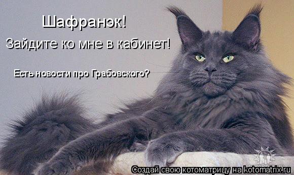 Котоматрица: Шафранэк! Зайдите ко мне в кабинет! Есть новости про Грабовского?