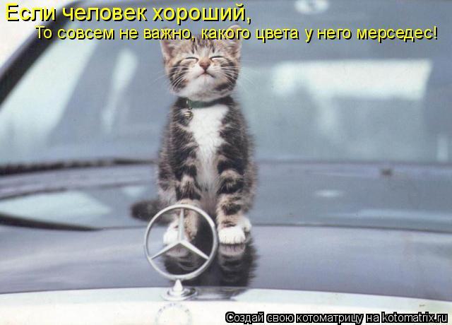Котоматрица: Если человек хороший, То совсем не важно, какого цвета у него мерседес!