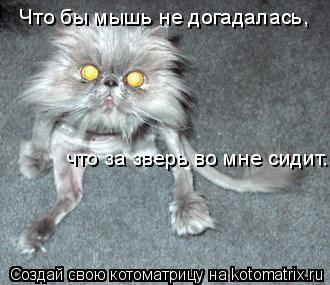 Котоматрица: Что бы мышь не догадалась, что за зверь во мне сидит.
