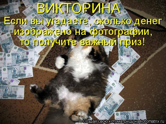 Котоматрица: ВИКТОРИНА  Если вы угадаете, сколько денег  изображено на фотографии,  то получите важный приз!