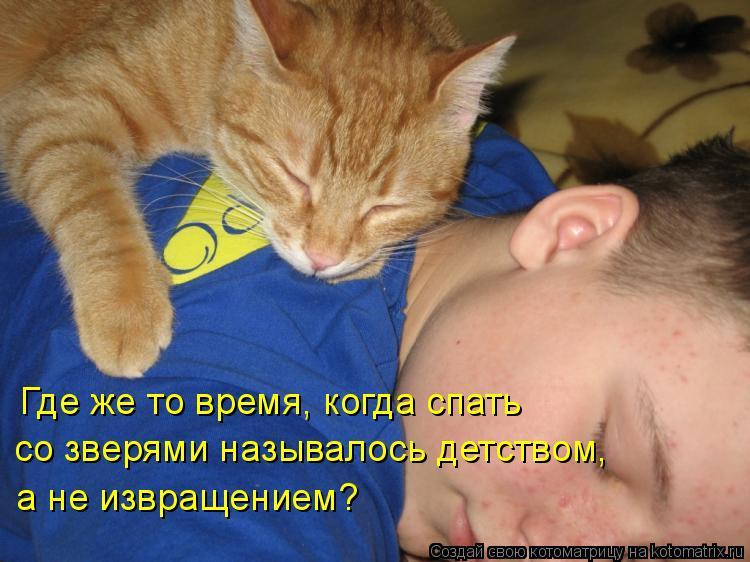 Котоматрица: Где же то время, когда спать со зверями называлось детством, а не извращением?