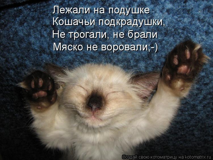Котоматрица: Лежали на подушке Кошачьи подкрадушки, Не трогали, не брали Мяско не воровали;-)