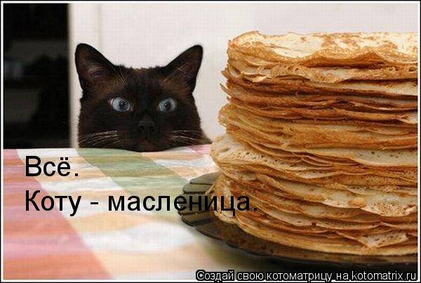Котоматрица: Всё. Коту - масленица.