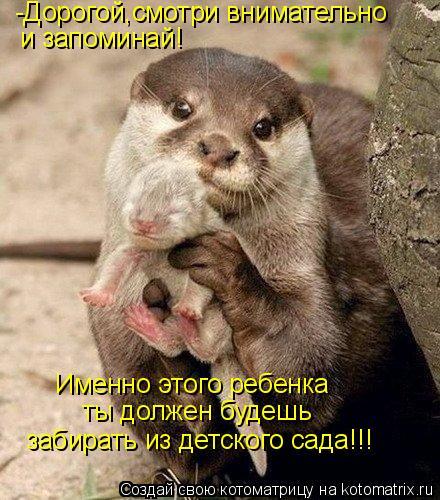 Котоматрица: -Дорогой,смотри внимательно и запоминай! Именно этого ребенка ты должен будешь забирать из детского сада!!!