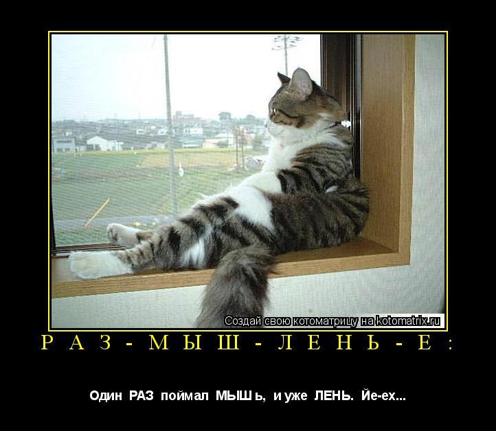 Котоматрица: Р А З - М Ы Ш - Л Е Н Ь - Е : Один  РАЗ  поймал  МЫШ ь,  и уже  ЛЕНЬ.  Йе-ех...