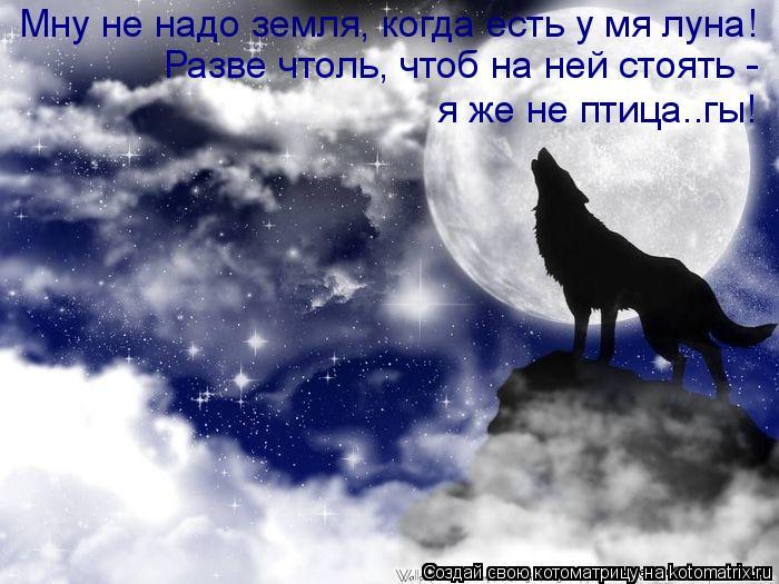 Котоматрица: Мну не надо земля, когда есть у мя луна! Разве чтоль, чтоб на ней стоять -  я же не птица..гы!