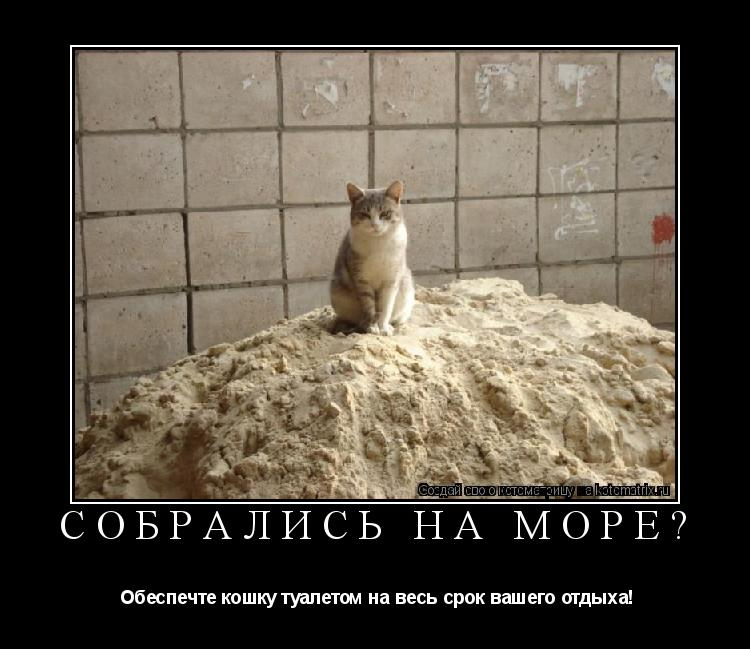 Котоматрица: СОБРАЛИСЬ НА МОРЕ?  Обеспечте кошку туалетом на весь срок вашего отдыха!