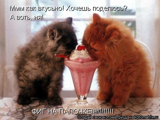 Котоматрица: Ммм как вкусьно! Хочешь поделюсь? А воть, ня! ФИГ НА ПАЛОЧКЕ!!!!!!!!!!!