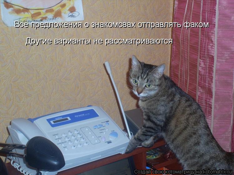 Котоматрица: Все предложения о знакомсвах отправлять факом Другие варианты не рассматриваются