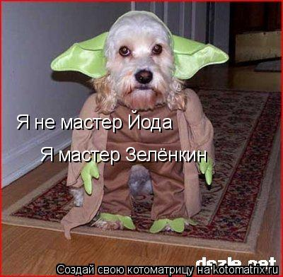 Котоматрица: Я не мастер Йода Я мастер Зелёнкин