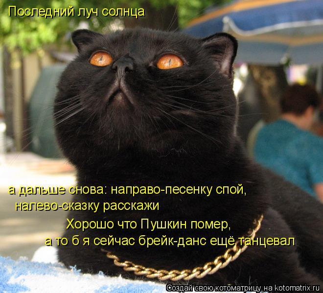 Котоматрица: Последний луч солнца а дальше снова: направо-песенку спой, налево-сказку расскажи Хорошо что Пушкин помер,  а то б я сейчас брейк-данс ещё та